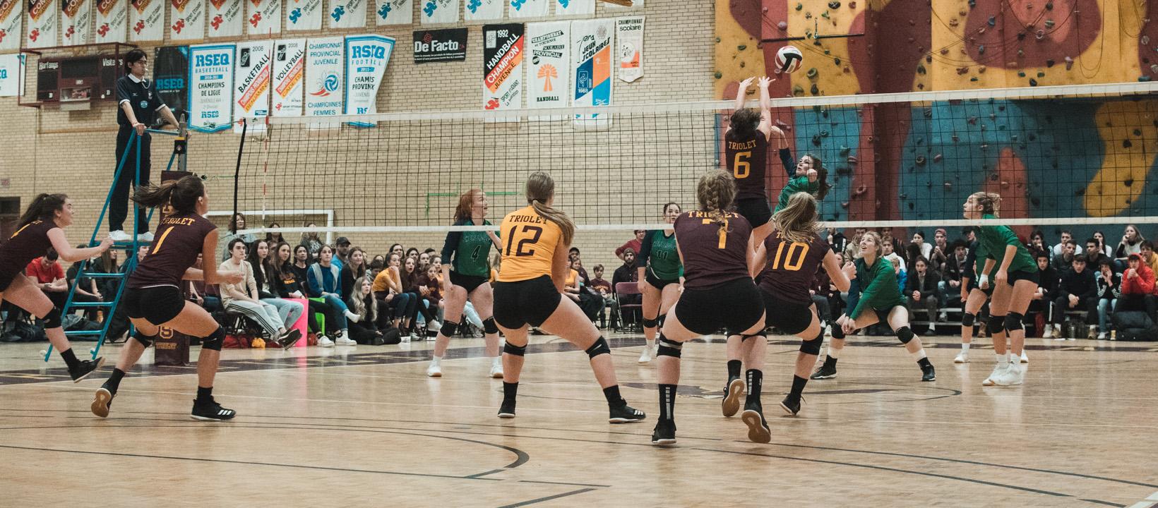 Volley R